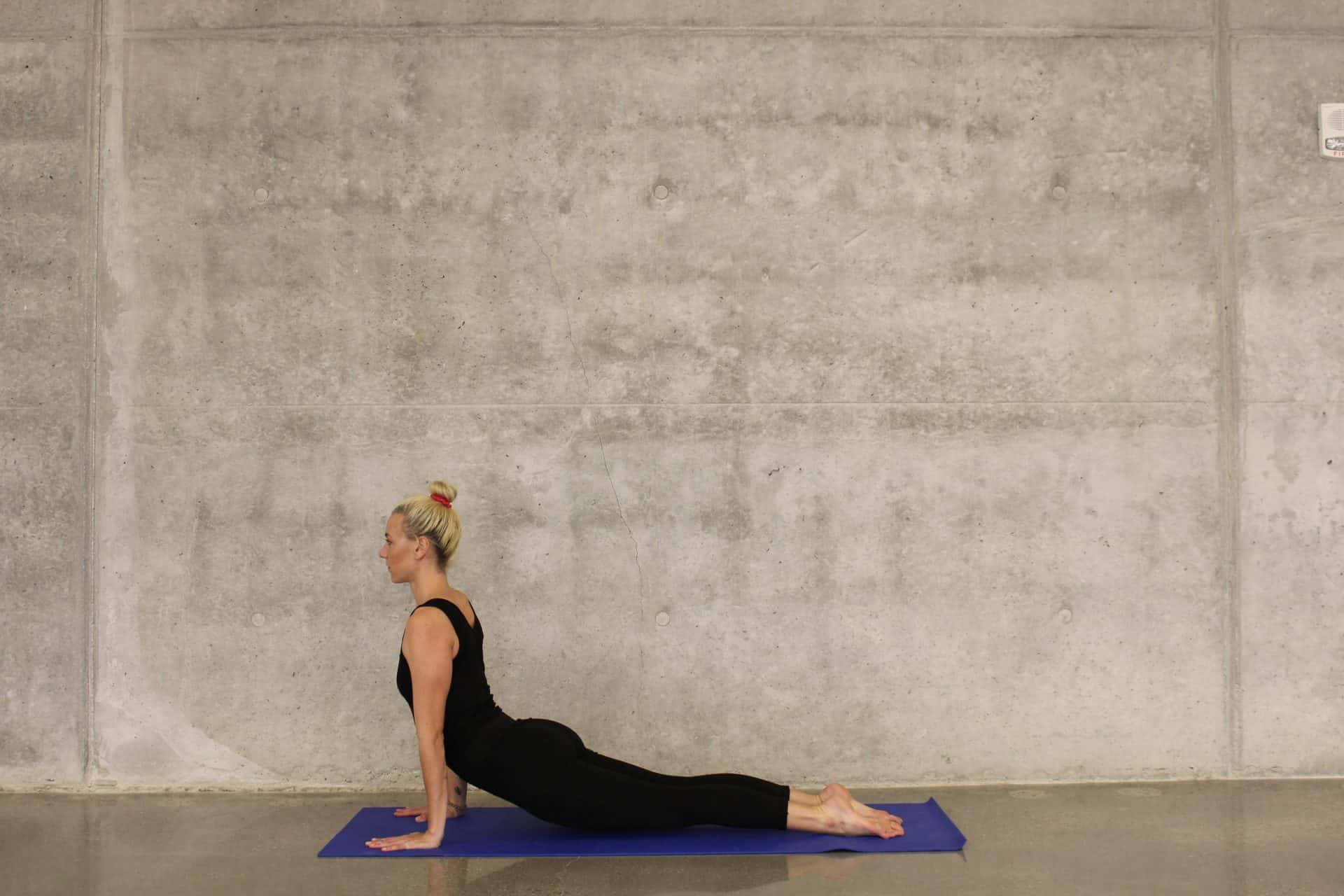 Kuh Katze Yoga